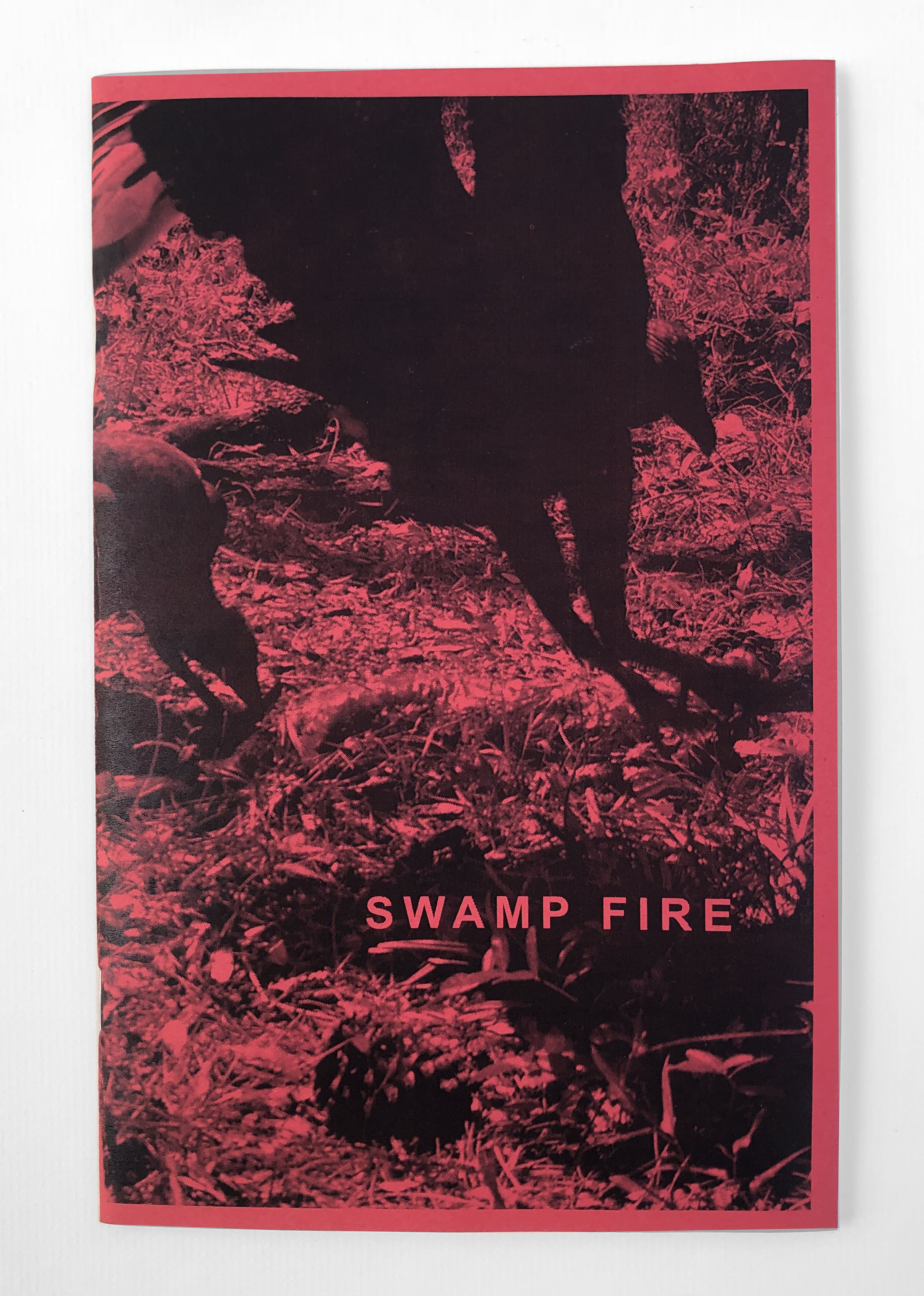 cole-caswell-swamp-fire